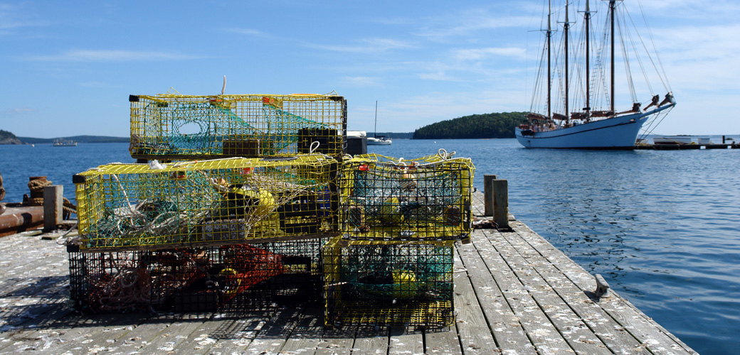 bar harbor maine lobster traps